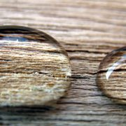 urine repellent coating on wooden surface